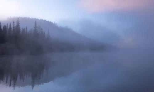 A Darkening Fog